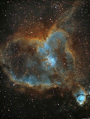 IC1805 - The Heart Nebula - Narrowband (Hubble Palette) (alastair.woodward) Tags: ic1805 heartnebula cassiopeia astronomy astrophotography stars sky night stargazing gas clouds longexposure skywatcher esprit80 triplet refractor as1600mmc 7nm 85nm 8nm baader zwo heq5 pro goto qhy narrowband hydrogenalpha oxygeniii sulphurii