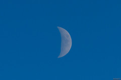 Lune le soir - Moon at night - 6613 (rivai56) Tags: lune le soir moon night 6613
