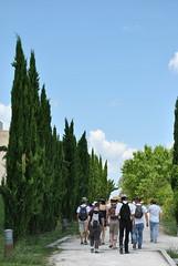 Parc du Cypressat - Sortie Clos Saint Romain