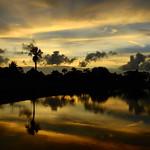 Yellow Sunset thumbnail