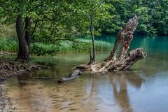 Plitvice - Jezero Kozjak (AnBind) Tags: kroatien ereignisse ausland 2018 süden orte urlaub poljanak ličkosenjskažupanija hr leebigstopper nd1000 ngc
