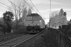 carciano #19, set 3 (train_spotting) Tags: carciano tigre tigrone e652133 trenitaliacargo trenitalia ticargo divisionecargo mir merciitaliarail nikond7100