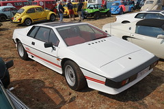 DSC00813 (picturesofthingsilike) Tags: zwartkops cars in the park august 2018 car show classic south africa