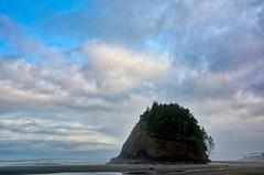 Morning On The Coast (gr8fulted54) Tags: aurorahdr on1photoraw nikon d7100 oregon beach