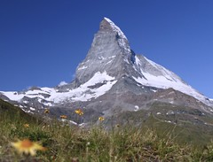 Iconic Mountain (evakatharina12) Tags: matterhorn cervino mont cervin alps mountain meadow switzerland suisse summer flowers