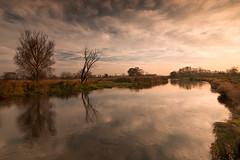River Nida (fotoswietokrzyskie) Tags: river nida water tree sky grass field nikond800 landscape serene sunset wood boat nikkor 1635 mm f4g ed vr