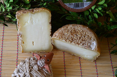 Serrat d'Ovella (Ricard2009 (Martí Vicente)) Tags: ilobsterit queso fromage cheese formatge kaas formaggio queijo ost sir τυρί сыр sūris peynir brânză gazta sajt caws сирене גבינה جبنة チーズ 奶酪 catalunya catalonia cataluña serratdeovella oveja sheepcheese sheep ovella