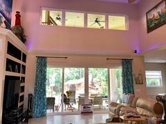 Paradise Exteriors Premium Hurricane Impact Windows and Doors