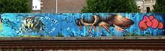graffiti along the railway antwerpen (wojofoto) Tags: antwerpen belgie belgium spoorweg railway trackside graffiti streetart wojofoto wolfgangjosten berchem