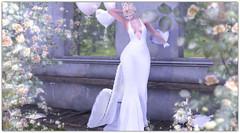 .Kirena (Abi Latzo) Tags: seniha thetrunkshow events bento beauty blonde secondlife sl shopping ysys truth supernatural avatar mesh maitreya model meshhead meshbody wedding bride dress gown people pose photography portrait poses