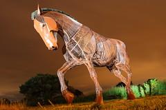 War Horse (Yorkshire Pics) Tags: warhorse memorial sculpture warmemorial featherstone nightphotography night nightshot nighttime yorkshire 2208 22082018 22ndaugust 22ndaugust2018 horsesculpture warhorsesculpture warhorsememorial