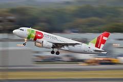 """Antero de Quental"" TAP Air Portugal CS-TTO Airbus A319-111 cn/1127 @ EBBR / BRU 17-08-2018 (Nabil Molinari Photography) Tags: anterodequental tap air portugal cstto airbus a319111 cn1127 ebbr bru 17082018"
