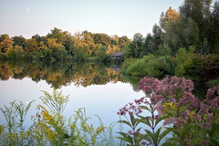 The Cabin (HJharland5) Tags: water tranquil still solitude peaceful tree trees forest park sky lake evening summer moon cabin shoreline kirtland ohio holden arboretum flowers reflection nikon