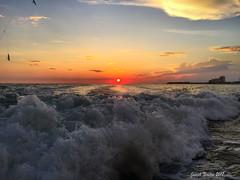 In the Rear View (shoot that!) Tags: beauty derstin gulf shootthat joenewton waves rearview sunrise vista view scenery 2017 fishing nature horizon silhouettes beach
