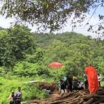 Maetaeng elephants park, Chiangmai thumbnail