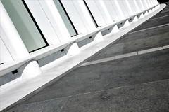 3WTC (My First Time) #13 (Keith Michael NYC (4 Million+ Views)) Tags: 3wtc worldtradecenter oculous santiagocalatrava newyorkcity newyork ny nyc manhattan