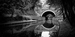 Quadrature du cercle (CrËOS Photographie) Tags: tourcoing hautsdefrance pont canal eau reflet géométrie calme ville symétrie