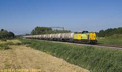RF18_Dordrecht_250618 (florisdeleeuw) Tags: railfeeding rf rf18 vtg un1170 dordrecht v100 lagezwaluwe ketelwagens explore 51398 botlek