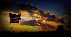 oh say can you see, by the dawn's early light (milomingo) Tags: nature outdoor sky cloud flag sunrise tree silhouette americanflag starsandstripes 4thofjuly independenceday patriotic red white blue orange yellow contrast landscape skyscape starspangledbanner wisconsin bold bright vivid vibrant rural fourthofjuly cmwd cmwdblue vignette usa light dark coth coth5