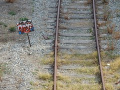 What should the train do? (mikecogh) Tags: rosewater railwayline track steel confusion sign defaced graffiti messy vandalism weeds