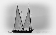 La Neptune, à l'ancienne... (Diegojack) Tags: morges vaud suisse d7200 nikon nikonpassion ancien noirblanc oldies autrefois neptune barque bateaux voileslatines manifestation