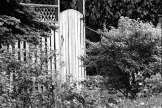 The Secret Garden Door