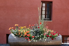a flower-filled town (overthemoon) Tags: france savoie 3vallées skiresort colourful flowers log wall window stmartindebelleville