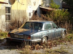 1984 Jaguar Xj6 Sovereign 4.2 (Alessio3373) Tags: cars oldcars classiccars autoshite abandoned abandonment abandonedcars autoabbandonate unused unloved neglected forgotten forgottencars scrap scrapped scrappedcars jaguar jaguarxj642 jaguarsovereign
