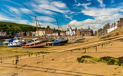 DSC_9963: Stonehaven, Scotland (Colin McIntosh) Tags: scotland stonehaven