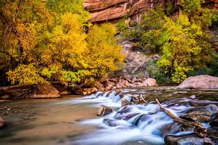 Sony A7RII Fine Art Zion National Park Autumn Winter Hike! Dr. Elliot McGucken Fine Art Landscape Photography!