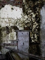 when your up against the wall (Steve Taylor (Photography)) Tags: mold cracks plaster face wall black green grey contrast brown brick wood timber newzealand nz southisland canterbury christchurch city cbd texture smiling smile spooky decay fractured