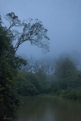 lakeside (Anuradhagraphy) Tags: travelworld travel trekking ella srilanka visitsrilanka village adventure anuradhagraphy amithanuradha asia mist miniadamspeak lake