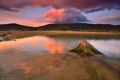Lights after the Storm (Hector Prada) Tags: sunset autumn trunk reflections water roots sky clouds lake storm swamp atardecer otoño pantano reflejos agua tronco cielo nubes tormenta álava paísvasco basquecountry