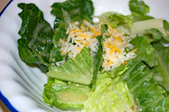 Salad With Italian Dressing. (dccradio) Tags: lumberton nc northcarolina robesoncounty indoors indoor inside food eat supper dinner meal lunch shreddedcheese cheese lettuce salad tossedsalad lettucesalad italiandressing corelle bowl saladbowl nikon d40 dslr
