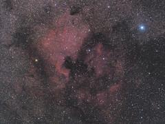 North America Nebula NGC 7000 & Pelican Nebula IC 5070 Widefield (TheWitscher) Tags: north america nebula ngc 7000 pelican ic 5070 widefield samyang 135 f2 canon eos 600da heq5 nordamerikanebel pelikannebel astronomie astronomy stars sterne sternenhimmel starry nights