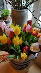 Bouquet of Flowers (grinnin1110) Tags: l3030 de vogelpark1 animalpark germany parkfürpapageien hesse restaurant indoors hasselbach hessen mittelgebirgetaunus flora vogelpark tulpen indoor evening bouquet weilrod hochtaunuskreis europe vogelburg tulips