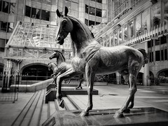 City horses (Мaistora) Tags: horse horses statue sculpture art architecture building complex office exchange market insurance reinsurance brokers risk finance minstercourt city squaremile london england britain uk mobile phone galaxy s7 android app snapseed hypocam