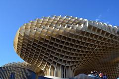 Come api operaie (encantadissima) Tags: siviglia andalusia spagna metropolparasol architettura