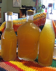 Latest Brewing Project:  Apple wine made from supermarket apple juice concentrate. (kevin63) Tags: lightner wine apple homebrew dangerous strong tang beware sweet supermarket applejuice
