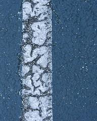 blacktop birch (robertranaldo) Tags: weathered birch tree birchtree asphalt art blacktop concrete abstract winter expression expressionism texture tone mood outsidethebox outside box getcloser macro nature justgoshoot findit explore nikon