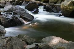 Pelaw Falls Haliburton wildlife forest (Wil James) Tags: sooc sonyilca99m2 zeiss2470 zeisszassm longexposure water silky summer haliburton ontario canada