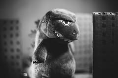 Building Inspector (3rd-Rate Photography) Tags: godzilla ゴジラ gojira kidrobot phunnyplush blackandwhite bw monster plush toy toyphotography canon 50mm 5dmarkiii jacksonville florida 3rdratephotography earlware 365