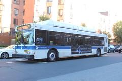 IMG_9812 (GojiMet86) Tags: mta nyc new york city bus buses 2011 c40lf cng 317 bx36 boston road 180th street