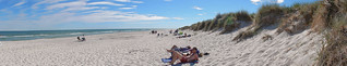 Sandhammaren beach - Sweden (N3124)