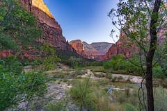 Zion_279-HDR (allen ramlow) Tags: zion national park utah mountain range blue sky sony a7iii landscape