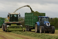 Claas Jaguar 870 SPFH filling a Broughan Engineering Mega HiSpeed Trailer drawn by a New Holland T7.200 Tractor (Shane Casey CK25) Tags: claas jaguar 870 spfh filling broughan engineering mega hispeed trailer drawn new holland t7200 tractor cnh nh blue casenewholland newholland castlelyons traktor tracteur traktori trekker trator ciągnik silage silage18 silage2018 grass grass18 grass2018 winter feed fodder county cork ireland irish farm farmer farming agri agriculture contractor field ground soil earth cows cattle work working horse power horsepower hp pull pulling cut cutting crop lifting machine machinery nikon d7200