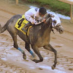 Churchill Downs Race: Tiznoble wins thumbnail