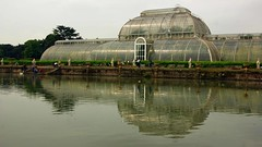 Reflecting on the palm house (WISEBUYS21) Tags: world famous palm house kew gardens london greenhouse green huge lake reflection glass ripples richmond park panorama flowers trees favourite faves great landscape life victorian wisebuys21 fx exposure x birds day out trip off tranquil relaxing stroll massive
