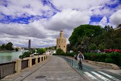 Carril bici - Bike lane (ricardocarmonafdez) Tags: sevilla streetphotography ciudad city urbanscape calles street bike bikelane cielo sky nubes clouds architecture people nikon d850 24120f4gvr