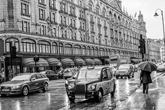 It is raining cats and dogs, London (gerardmahieu) Tags: londen